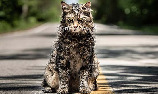 pet sematary church remake