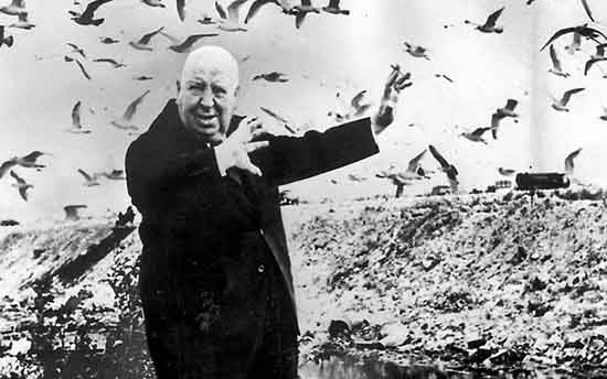 thebirds alfred hitchcock